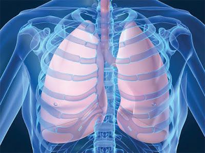 Τι είναι η πνευμονία, ποιες οι αιτίες και ποια τα συμπτώματα; Τι μπορείτε να κάνετε για να μην ξαναπάθετε πνευμονία;