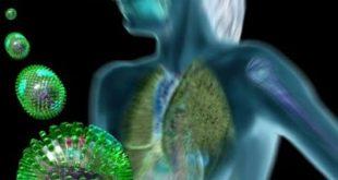 Επιστημονική εκδήλωση για τον ιό της γρίπης στο ΕΚΠΑ, στις 3/10/2016