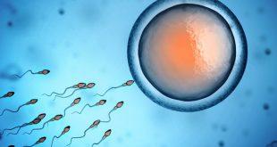 Οι τρεις διατροφικοί εχθροί της ανδρικής γονιμότητας