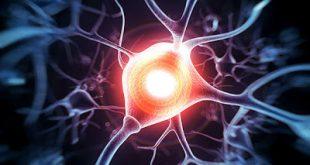 Τα δισκία κλαδριβίνης μείωσαν σημαντικά την ατροφία εγκεφάλου σε ασθενείς με πολλαπλή σκλήρυνση