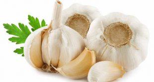 Σκόρδο, ένα φάρμακο της φύσης για την καρδιά, την υπέρταση, κατά των λοιμώξεων και του καρκίνου του παχέος εντέρου