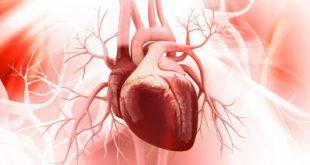 Τι είναι η CRP (C αντιδρώσα πρωτεΐνη); Πόσο χρήσιμη είναι στη διάγνωση φλεγμονής αλλά και στην πρόληψη καρδιακής προσβολής;