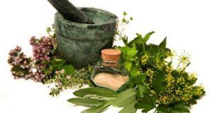 Το οπλοστάσιο της φύσης: Βότανα και οι θεραπευτικές τους ιδιότητες ανά ασθένεια