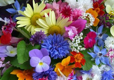 Λουλούδια και υγεία. Κάνουν καλό στην κατάθλιψη, την ανάρρωση, την κόπωση