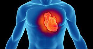 Πιο ευαίσθητοι οι άνθρωποι που μπορούν να ακούσουν την καρδιά τους