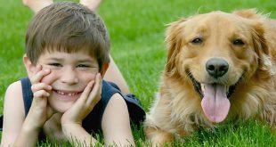 Πώς επιδρούν τα κατοικίδια στην ψυχική υγεία των παιδιών