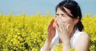 Τι είναι η αλλεργία; Πώς εκδηλώνεται μια αλλεργική αντίδραση και πώς αντιμετωπίζεται;