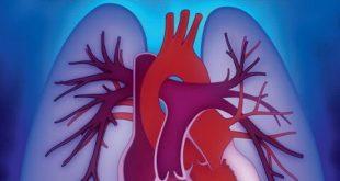 1ο Πανελλήνιο Συνέδριο Πνευμονικής Υπέρτασης