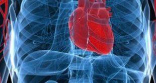 """Πρωτοπορεί το """"ΑΤΤΙΚΟΝ"""" νοσοκομείο στη διάγνωση των καρδιακών νοσημάτων με νέο σύγχρονο τεχνολογικό εξοπλισμό"""