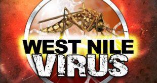 Το πρώτο περιστατικό από τον ιό του Δυτικού Νείλου για το 2017