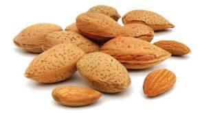 Αμύγδαλα, για μείωση χοληστερίνης, γερών οστών, για το κρυολόγημα, την μνήμη, τη δίαιτα, κατά καρδιακών παθήσεων