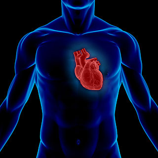 Προστασία της καρδιάς