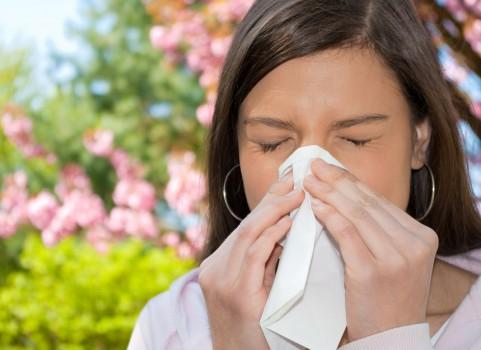 αλλεργικές