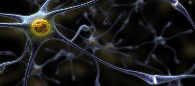 Πρωτοποριακή υπολογιστική μεθοδολογία για τη μελέτη νευροεκφυλιστικών νόσων