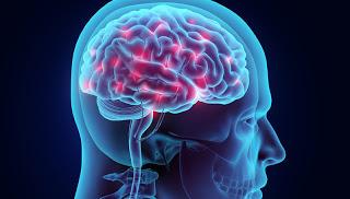 Νέα τεχνική βρίσκει την πρόωρη γήρανση του εγκέφαλου