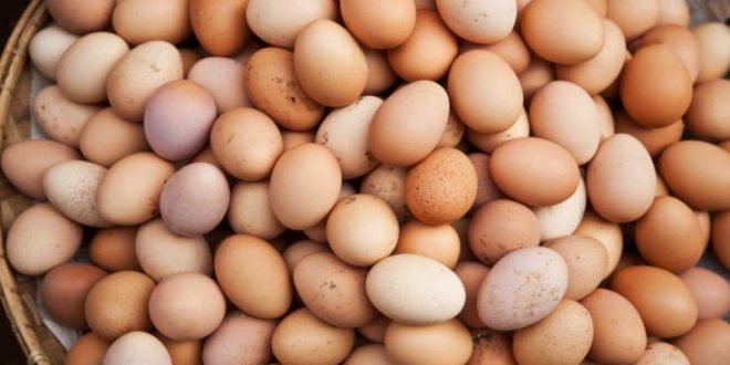Πόσα αυγά την εβδομάδα οφελούν τον οργανισμό