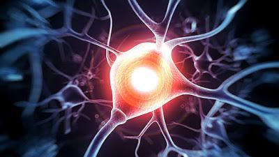 Τα υπό έρευνα Δισκία Κλαδριβίνης Δείχνουν Μεγαλύτερη Θεραπευτική Επίδραση σε Υποτροπιάζοντες Ασθενείς με Πολλαπλή Σκλήρυνση
