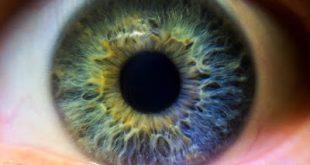 Το RTH258 (brolucizumab) της Novartis επιδεικνύει ισχυρά οφέλη για την όραση των ασθενών με νεοαγγειακή Ηλικιακη Εκφύλιση Ωχράς