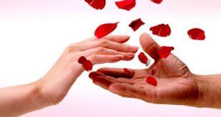 Bloode: Μια νέα ψηφιακή πλατφόρμα για εξεύρεση εθελοντών αιμοδοτών