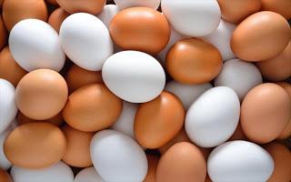 Μαζική απόσυρση μολυσμένων με εντομοκτόνο αυγών σε Ολλανδία και Γερμανία