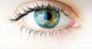 Οι πέντε τροφές που προστατεύουν την όραση