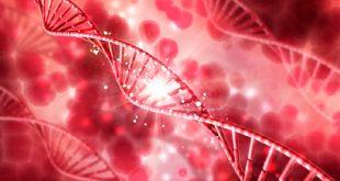 Μοριακή - γονιδιακή ανάλυση της Θρομβοφιλίας. Πότε πρέπει να γίνεται ανίχνευση μεταλλάξεων για την θρομβοφιλία
