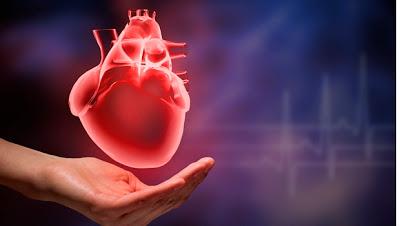 Δυναμώνουμε την καρδιά μας και κερδίζουμε χρόνια, με μικρές αλλαγές στις συνήθειες μας