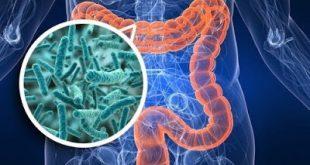 Γαστρεντερίτιδα, διάρροια, τυμπανισμός, φούσκωμα έχουν ανάγκη από προβιοτικά