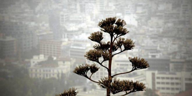 Τι πρέπει να προσέξουμε λόγω της αφρικανικής σκόνης