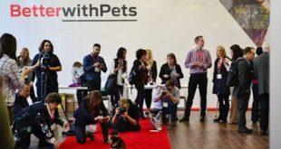 Η Nestlé Purina δημιουργεί το «BetterwithPets», το πρώτο βραβείο για την ενίσχυση των κατοικίδιων ζώων, προθεσμία 15 Απριλίου