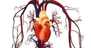 Νέα σημαντικά δεδομένα για τη θεραπεία σε ασθενείς με την τρανσθυρετίνη μυοκαρδιοπάθεια
