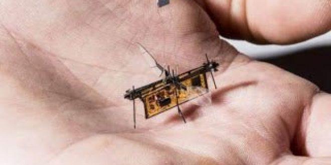 Πέταξε το πρώτο ασύρματο ρομποτικό έντομο