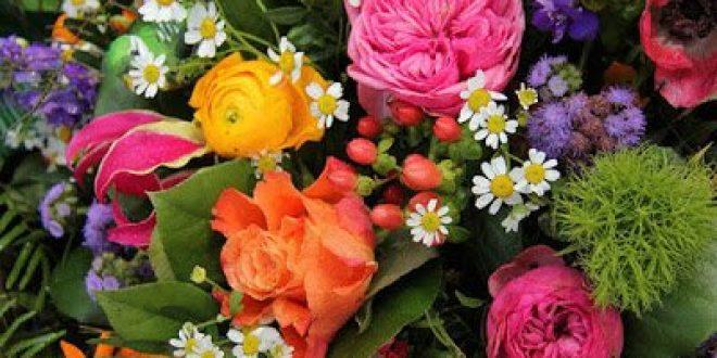 Τα λουλούδια και η θεραπευτική τους επίδραση στη διάθεση, στην κατάθλιψη, την ανάρρωση, την κόπωση