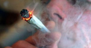 Τετραπλάσια η χρήση κάνναβης των γονέων που καπνίζουν σε σχέση με τους μη καπνιστές