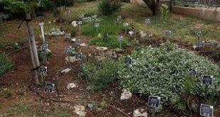 Ένας Ιπποκράτειος Βοτανικός Κήπος στο Πανεπιστήμιο Ιωαννίνων