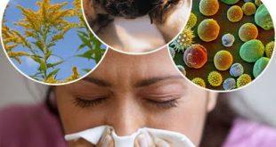 Αλλεργία. Ποιος ο μηχανισμός δράσης; Τι είναι και πώς μπορεί να αντιμετωπιστούν οι αλλεργίες; Υπάρχει τρόπος πρόληψης;
