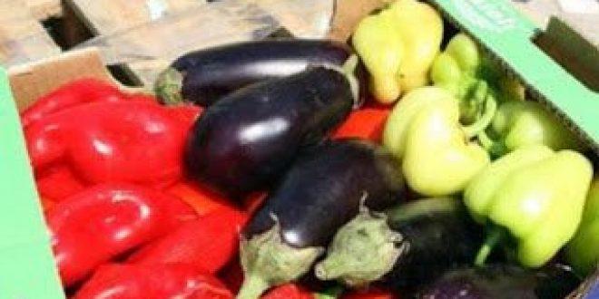 Μείωση 30% στην παραγωγή λαχανικών στη Ν. Ευρώπη, λόγω κλιματικής αλλαγής και λειψυδρίας