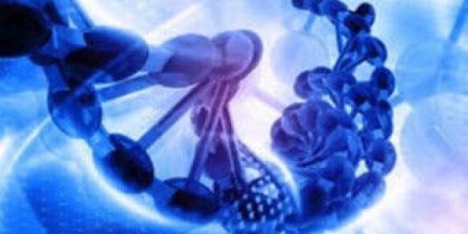 Πόσα γονίδια έχει ο άνθρωπος; Σύμφωνα με την τελευταία «απογραφή» είναι 21.306
