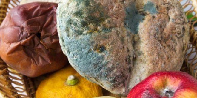 Τι θα σας συμβεί εάν φάτε μουχλιασμένο τυρί ή ψωμί [εικόνες]