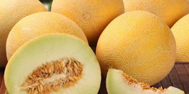 Πεπόνι, φρούτο που δεν παχαίνει, έχει αντιπηκτικές ιδιότητες, πλούσιο σε αντιοξειδωτικά και ιχνοστοιχεία, βοηθά στο αδυνάτισμα